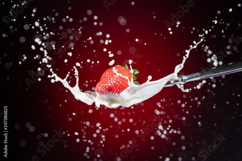 A tasty ripe red Strawberry fall into milk in front of a gradient red backdrop o Canvas Print