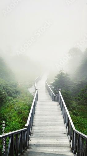 Fotografia Empty Footbridge During Foggy Weather