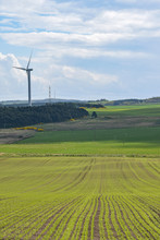 Fields Of Crops And Sheep Leading To Wind Turbine And Power Lines. Green Energy Concept. Sunny Day With Blue Sky And Clouds. Taken Near Lochgelly, Fife, Scotland, UK.