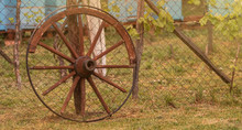 A Broken Wheel From A Harness Leaning Against A Wire Fence. Hives In The Background. Sunny Day