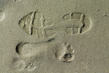 Shoe Print And Footprint On Wet Sand
