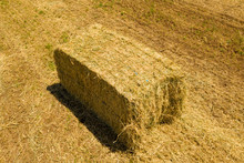 Large Ready For Shipping Square Hay Bale In A Field.