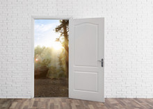 Door Open Into Forest On Sunny...