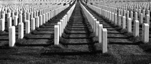 Row Of Tombstones At Fort Snelling National Cemetery