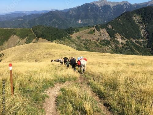 horseback riders mountain italy Canvas Print