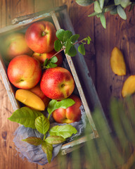 Ripe peaches in wooden box. Top view from above