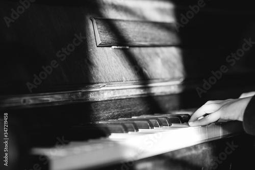 Fototapeta Cropped Hands Of Man Playing Piano