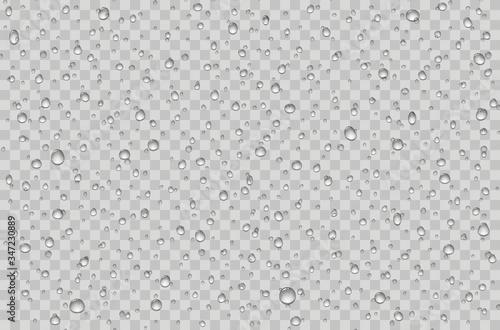 Cuadros en Lienzo Water droplets on a transparent glass. Rain drops on window.