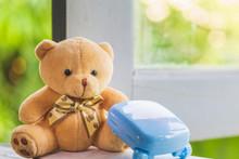 Close Up Lovely Teddy Bear Sit...