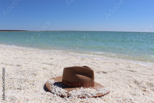Akubra hat on the shell beach Canvas Print