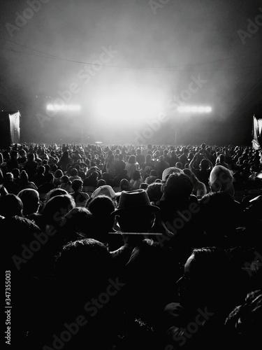Crowd At Music Concert Fototapet