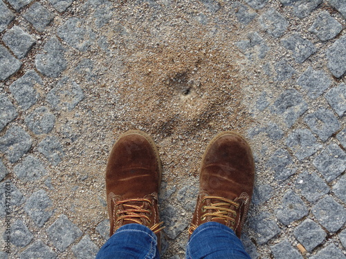 Photo Low Section Of Man Wearing Shoes On Footpath By Anthill
