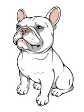 Cute Cartoon French Bulldog. Vector Illustration