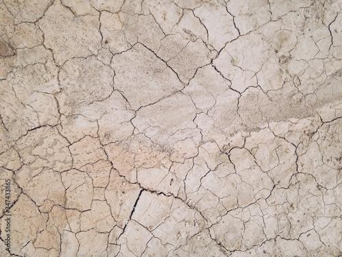 Fotografia Surface Of Cracked Earth