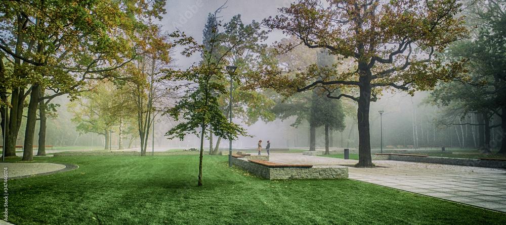 Fototapeta spotkanie w parku rano jesienią we mgle