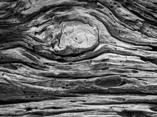 Close-up Of Knotted Wood