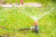 Leinwanddruck Bild - Rasen bewässern im Frühjahr