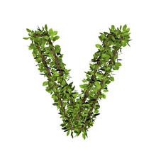 Leaf Style Letter V. 3D Render...