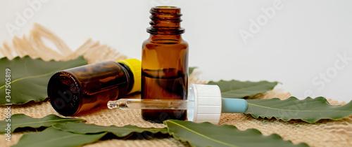 Fototapeta Tea tree essential oil in a small bottle. Selective focus.