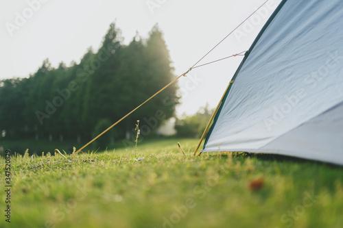 Fototapeta tent in park obraz