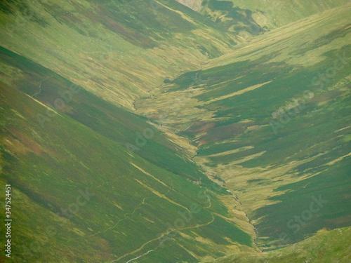 Fototapeta Scenic View Of Agricultural Field obraz na płótnie