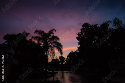 pink tropical sunset after rain silhouette palm tree