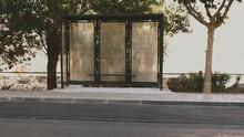 Empty Bus Stop Amidst Trees