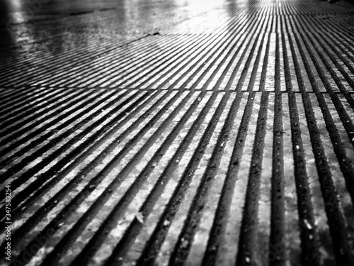 View Of Wet Pavement Fotobehang