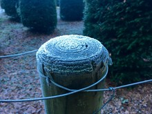 Close-up Of Frozen Wooden Post...