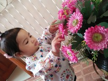 High Angle View Of Cute Girl Touching Artificial Flowers In Vase At Home