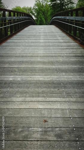 Fotografie, Tablou View Of Footbridge
