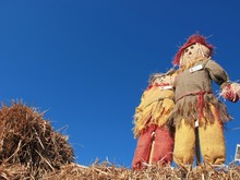 Low Angle View Of Scarecrow Against Clear Blue Sky