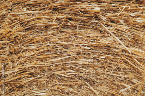 Canvas-taulu Full Frame Shot Of Hay