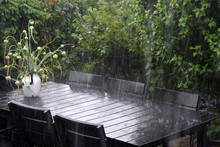 Table And Chairs Against Plants During Rainy Season