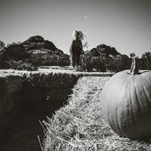 Close-up Of Pumpkin On Field In Front Of Scarecrow Against Clear Sky