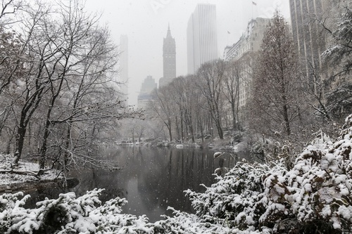 snow day in central park