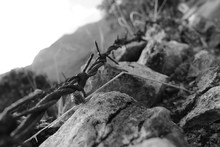 Close-up Of Barbed Wire By Rocks On Field