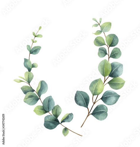 Obraz Watercolor vector wreath with green eucalyptus leaves and branches. - fototapety do salonu