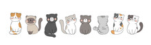 Draw Banner Cute Cat On White For Greeting Card.