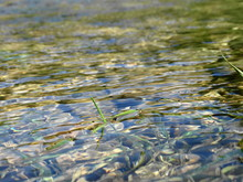 Close-up Of Rippled Water In Lake
