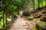 Droga ścieżka Sudety Karpacz Śnieżka góry