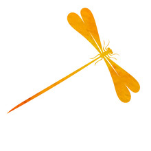 Orange Watercolor Dragonfly S...