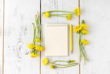 Dandelion Flowers Collection W...