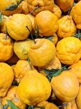 Yellow  Oranges Under  Bright ...