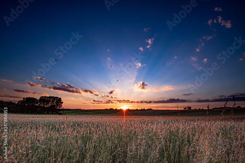 Fototapeta Zachód Słońca w Wojkowicach Polska. obraz