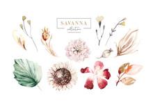 Set Watercolor Elements Of Sav...