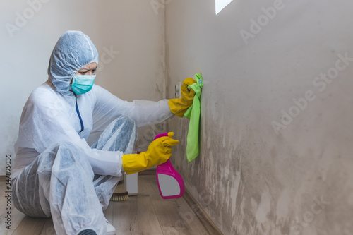 Fotografie, Obraz Worker of cleaning service removes mold from wall using spray bottle with mold remediation chemicals, mold removal products
