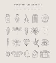 Collection Of Vector, Fine, Hand Drawn Logo Design Elements, Detailed Decorative Illustrations And Icons For Various Ocasions And Purposes. Trendy Line Drawing, Lineart Style