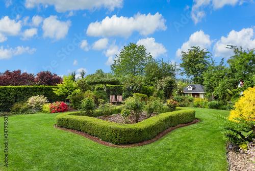 Valokuva Amazing manicured backyard with large lawn, bushes, hedges, and plants on sunny