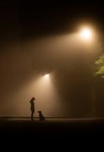 Girl And Dog On Foggy Lamp Lit...